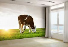 Cow Grazing in Fresh Pastures Wallpaper Mural Photo 17970861  premium paper