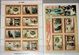 GUINEA 2001 Klb 3434-37 Block 693 Katzenrassen Cats Katzen Domestic Animals MNH
