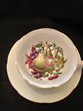 Royal Grafton English Bone China Cup & Saucer, Pale Green w/Fruit Pattern