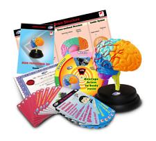 STEM University Brain - Professional Set