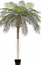 10 foot Artificial Phoenix Palm Tree Silk Date Coconut Sago in Pot Plant Flower