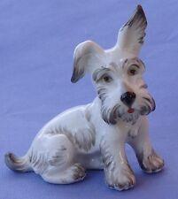 Skye Silky Terrier Briard Dog Wien Austria Augarten