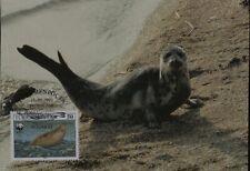 Caspian Seal Marine Mammal Turkmenistan Maximum Card Wwf Panda Logo Issue 1993