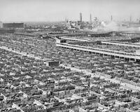 CHICAGO LIVESTOCK STOCKYARDS 1947 11x14 SILVER HALIDE PHOTO PRINT