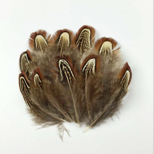 100PCS Natural Pheasant Feathers For Craft Sewing Millinery Costume Wedding Card