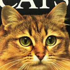 Reader's Digest Illustrated Book Cats Hardback 1992 Feline Crazy Cat Lady