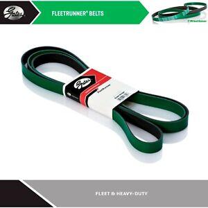 GATES Heavy Duty Serpentine Belt for 2017 WESTERN STAR 4900SA L6-14.9L