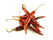 HOT CHILLI PEPPER DE ARBOL  100 FINEST SEEDS