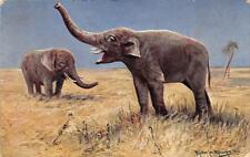 CPA FANTAISIE FIGURANT DEUX ELEPHANTS DANS LA BROUSSE