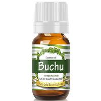 Buchu Essential Oil (Premium Essential Oil) - Therapeutic Grade - 10ml