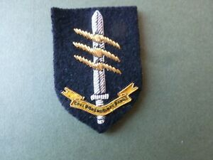 SNCO's embroidered beret badge