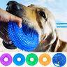 Pet Dog Dental Teething Chew Toy Durable Trainning Sound Toys Pets Supplies