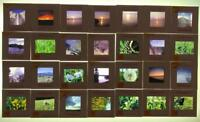 Vintage Lot of 28 Kodachrome Color Photograph Slides Nature Outdoors 1970's