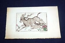 Clara Tice Original Ink + Watercolor Etching Signed by Osa Johnson African Kudu