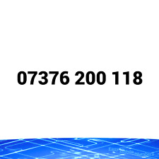 07376 200 118 on EE PAY AS YOU GO SIM CARD EASY MEMORABLE GOLD MOBILE NUMBER