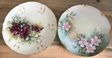 Set of 2 Limoges Hand Painted Floral & Gold Cabinet Plates Early 1900's