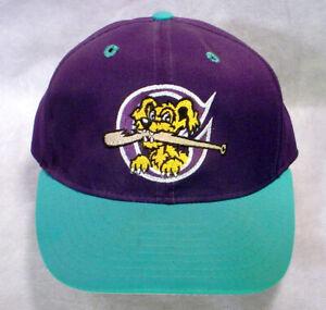 Charleston RIVERDOGS Baseball HAT CAP Logo DOG BAT Fitted 6-3/4 Purple Teal SAL