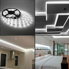 16.4FT 5050 LED Strip Cool White Light 5M 300 LED Flex SMD For Decoration 12V DC