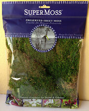 Miniature FAIRY GARDEN Terrarium ~ Decorative Preserved Sheet Moss ~ NEW