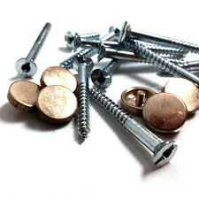 "4 x 2"" ZINC MIRROR SCREWS WITH 4 POLISHED BRASS DECORATIVE DISCS - FREE POST"