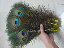 Beautiful natural peacock feathers 10-12 inches 25-30 cm, various colors