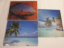 Lot of 3 Prints TROPICAL PALM TREES BEACH MOUNTAINS 8x10 Nature Photo Picture