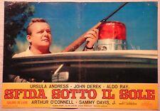 Fotobusta SFIDA SOTTO IL SOLE 1964 URSULA ANDRESS, JOHN DEREK, ALDO RAY