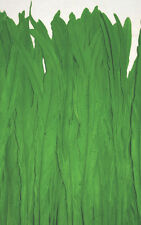"Rooster Tail Feathers Kelly Green 1/4 lb 12-14"" Hair Extention"