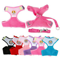Soft Mesh Extra Small Dog Harness Lead Pet Puppy Cat Rabbit Vest Chihuahua S M L