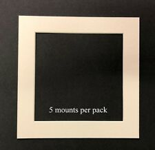 12 X 12 Inch White Mounts to fit 10 x 10 Photo & Picture - 5 PACK