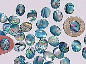 10pc Miniature Abalone Shell cab flatback cabochons Little floating charm 8mm BL