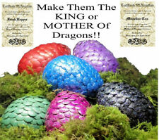 Adopt A Baby Dragon Egg With Personalised Certificate - 10+ Colours!