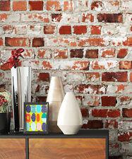 newroom fondo de pantalla piedra rojo, blanco Casa campo, Moderno 3d Aspecto