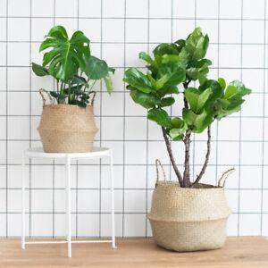Seagrass Belly Woven Rattan Basket Flower Plants Pots Home Indoor Storage Bag 1x