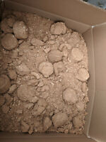 20kg sawdust chicken, poultry, animal bedding