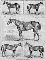 STEEPLE-CHASING ROCKAWAY HUNT CLUB JOCKEYS CEDARHURST CLUBHOUSE HORSE RACE TRACK