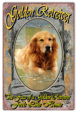 The Face Of A Golden Retriever Reproduction Animal Metal Sign 12×18