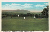 Postcard Second Green No 1 Golf Course Eagles Mere Golf Club Eagles Mere PA