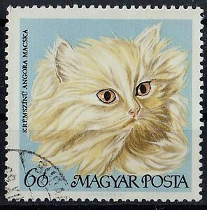 HUNGARY 1968 Domestic CAT Animals 1.20 STAMPS