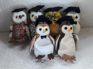 Ty Beanie Babies Class Owls Lot of 6  Wise Wisest Smarty Smart Smarter Smartest