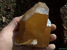 TOP COLLECTOR___HUGE CLEAR TABBY POINT___Arkansas Quartz Crystal