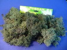 Jordan ISLANDMOOS dunkelgrün GROßPACKUNG mit 80g    63A