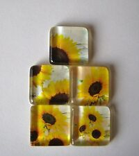 Oh So Very Pretty and Fun Sunflower Fun Square Glass Magnets Set of 5
