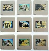 The Valley of Gwangi 1969 lot of (17) 35mm transparency slides