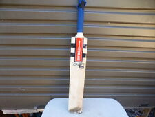 gray nicolls E41 380 Junior  English Willow cricket bat