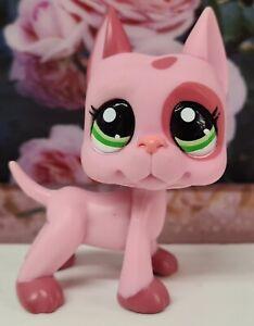 Authentic Littlest Pet Shop VHTF #2598 2 Tone Pink Great Dane~European Variant