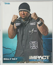 Bully Ray Dudley Officially Licensed TNA Wrestling Promo Photo