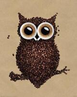 Coffee Owl Poster Coffee Owlie 40 x 50 cm