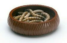 New listing Feeder Worm Terrarium Dish - Live Reptile Mealworm, Superworm Food Dishes New