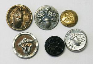 6 Antique Vintage Metal Acorn Buttons~1 Glass